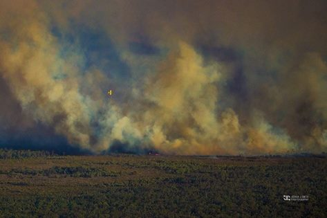 Pilliga fires, 2015_NSW RFS