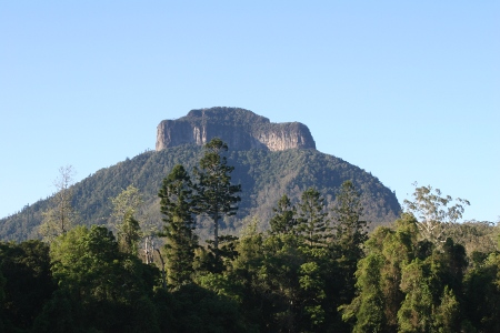 Mt Lindesay, McPherson Range, the last remaining stronghold of the Eastern Bristlebird